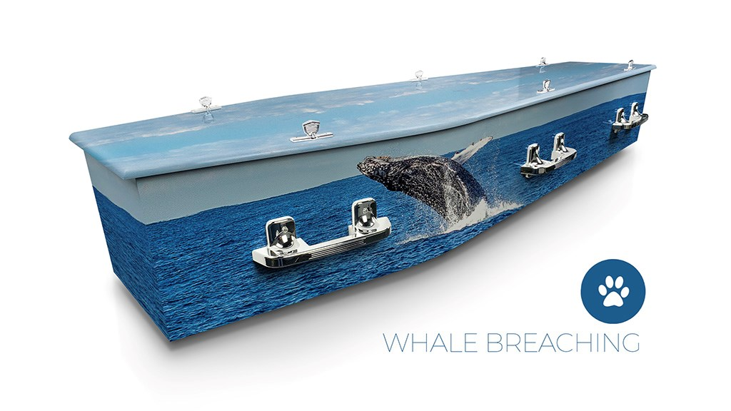 Whale Breaching - Lifestyle Coffins