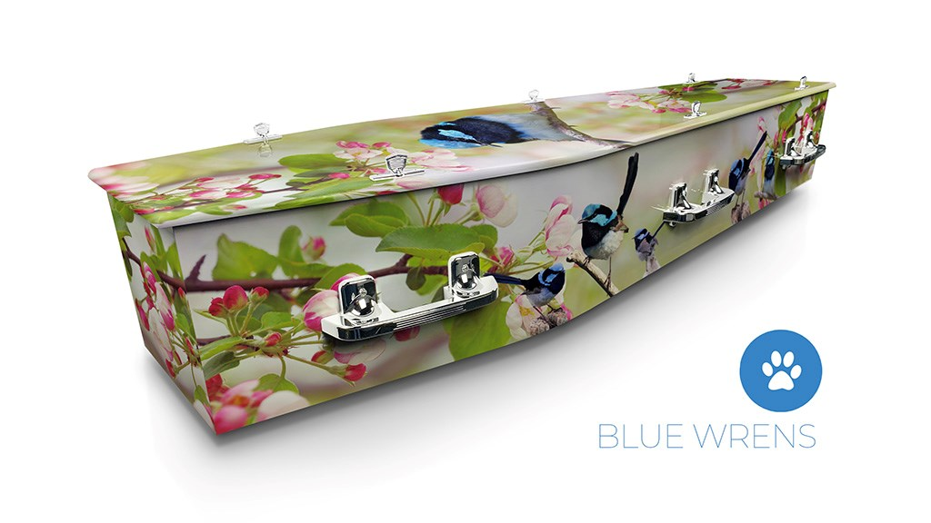 Blue Wrens - Lifestyle Coffins